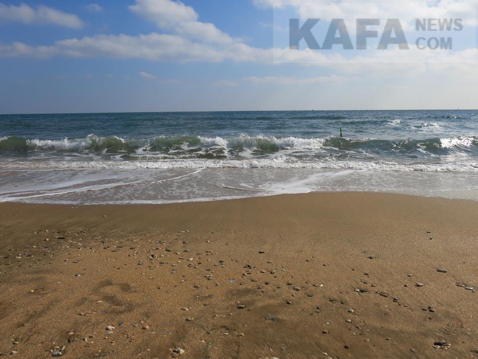 Море волнуется раз: ученые узнали, почему возросла штормовая активность наЧерноморском побережье