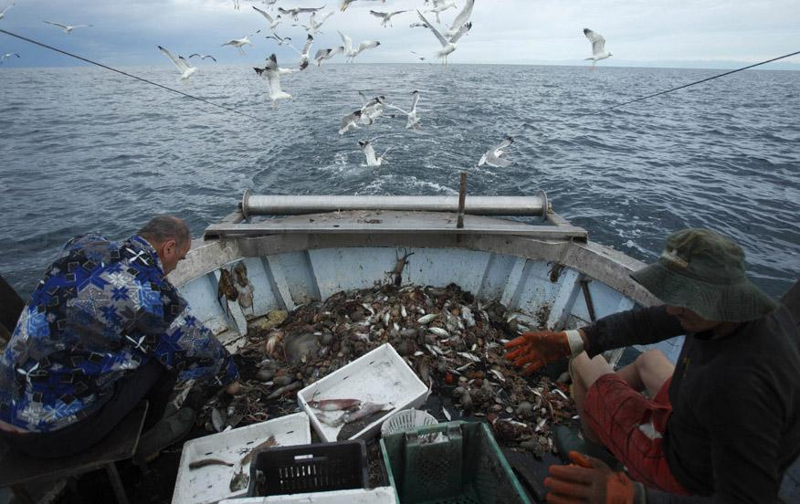 ловля сетями у берегов моря