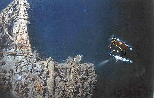 есть ли крысы на подводных лодках