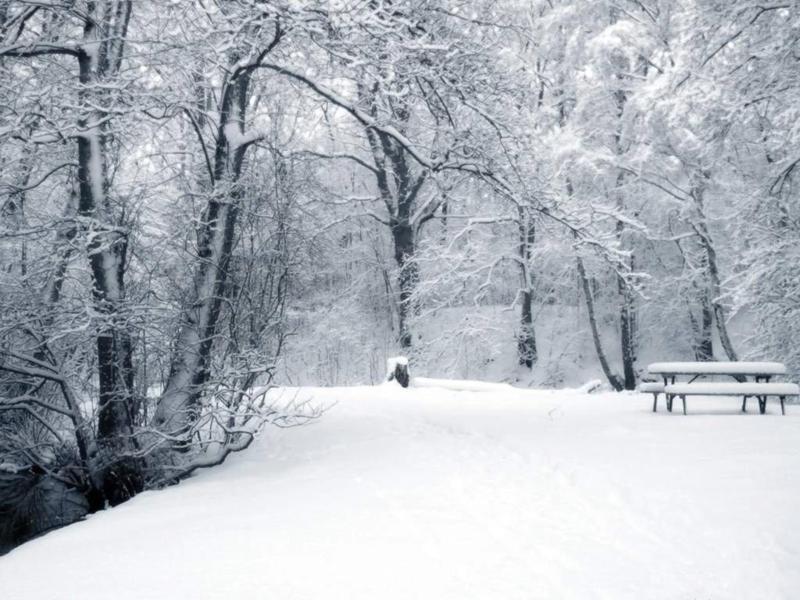 Зима в украину придет на крещение