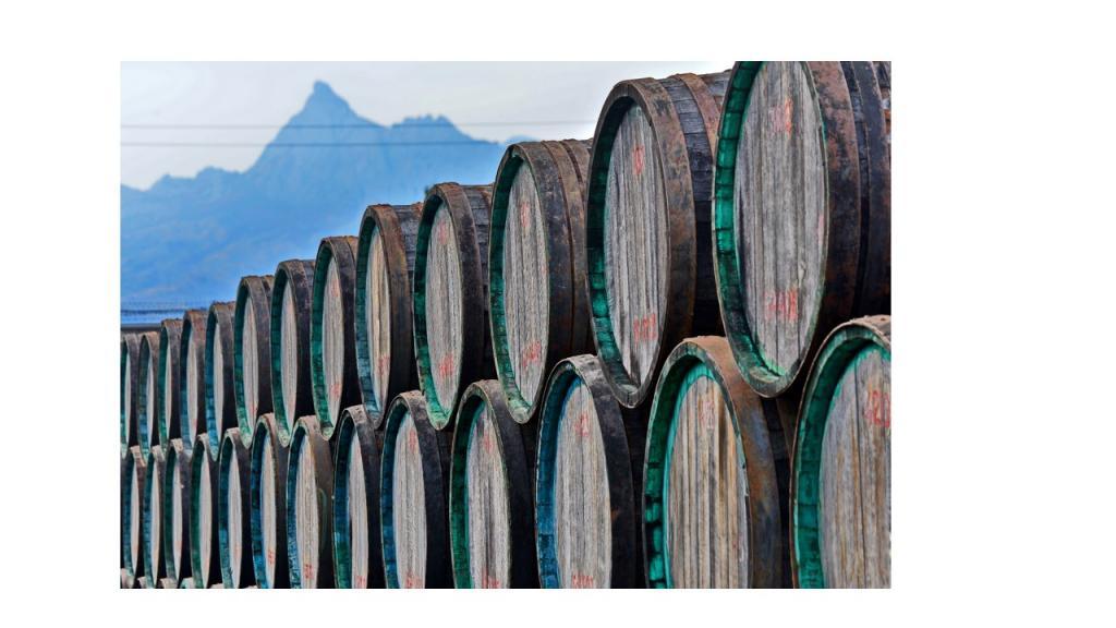 Фото новости - На заводе Коктебель федеральный телеканал снимал фильм о виноделии России