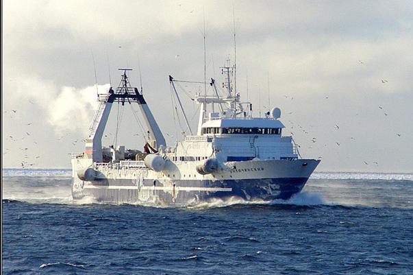 ооо вега рыболовная компания