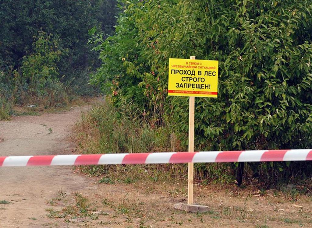Фото новости - В Феодосии до 30 сентября полиция ограничит доступ населения в леса