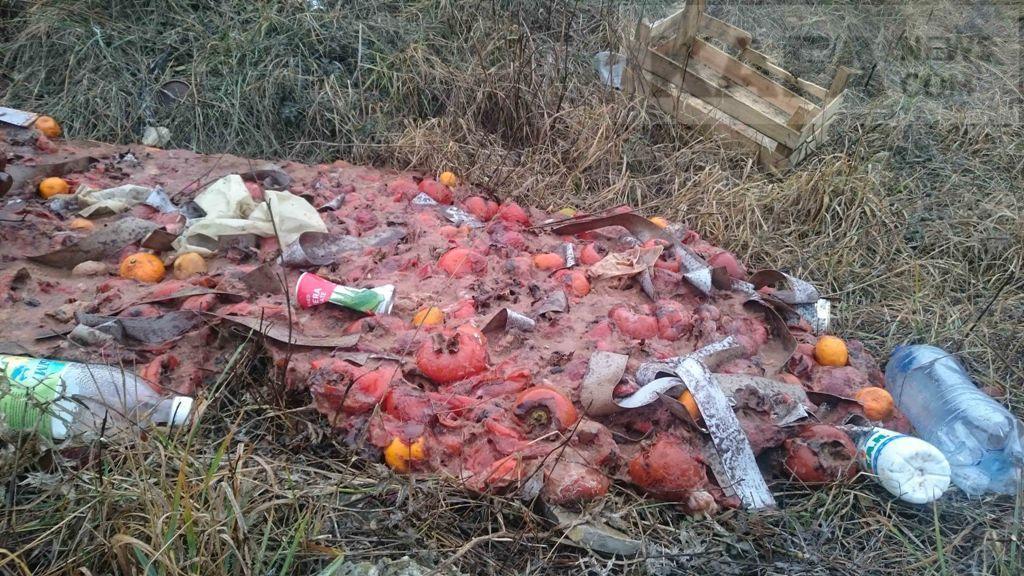 Фото новости - В Феодосии неизвестные устроили стихийную свалку хурмы(фоторепортаж)