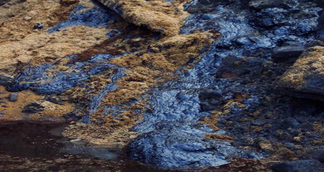 Фото новости - В Феодосии загрязняли почву нефтепродуктами