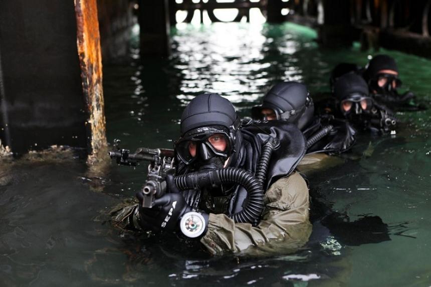 Террористы кругом: Пилилово бабла  на стройке моста в Крым плавно перетекает в распил бабла на его охране