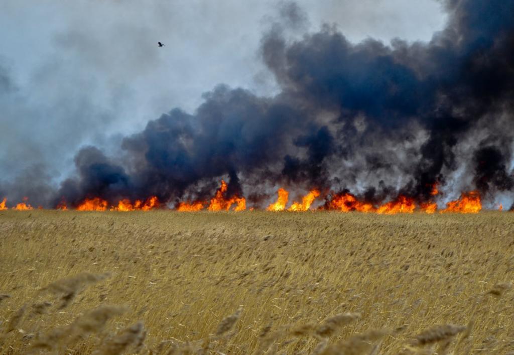 Из-за пожара после падения частей запущенной сБайконура ракеты погиб человек