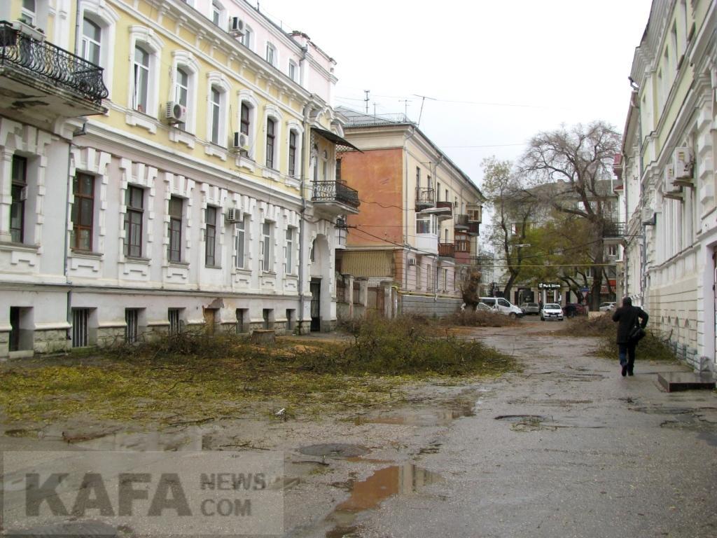 Фото новости - Возле феодосийского ЗАГСа спилили деревья(фоторепортаж)