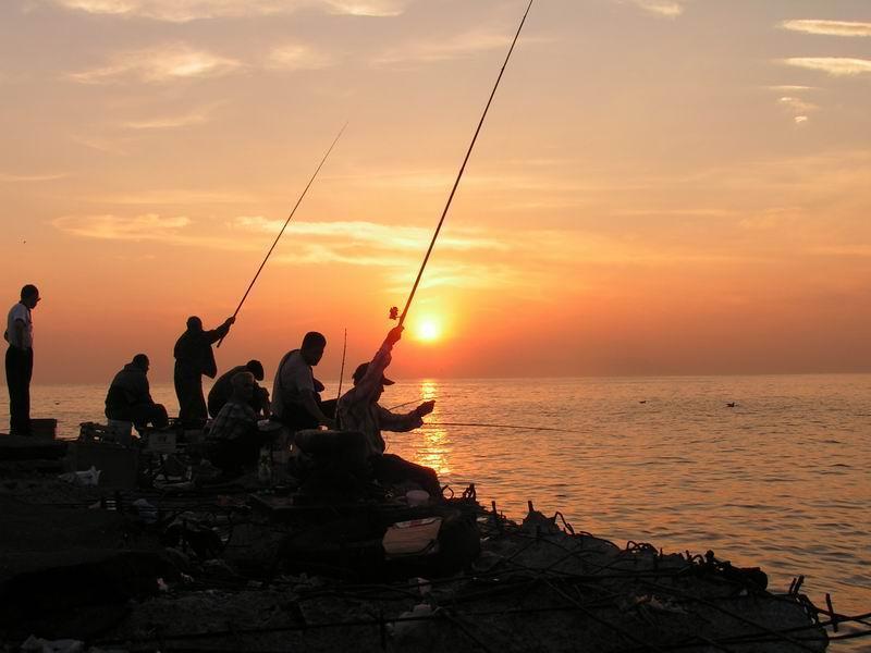 Вылавливать кефаль в стометровой прибрежной зоне Феодосийского залива запрещено в осеннее - зимнюю пору года