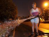 В Феодосии плохо поливают саженцы