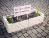 В Феодосии горожане воруют цветы:видео