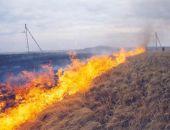 В России запретили сжигать сухую траву