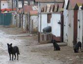 От председателей требуют навести порядок на территориях гаражных кооперативов Феодосии