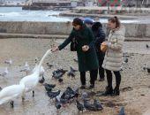 Феодосийский залив в пасмурный февральский день:фоторепортаж