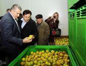 Крымские аграрии и в этом году могут не успеть освоить выделенные деньги
