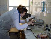 Овощи, мясо и саженцы должны проверяться в лабораториях на рынках Феодосии