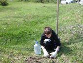 Феодосийцы высадили деревья у озера Дуранте:фоторепортаж
