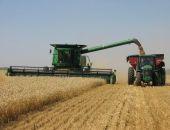 Крыму на развитие растениеводства и животноводства выделят 2,8 млрд. рублей