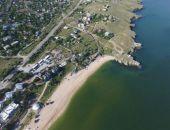 В Крыму закрыли для купания пляж в Щёлкино; с побережья вывозят мёртвую рыбу