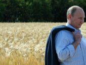 Путин считает, что Россия может стать крупнейшим производителем продовольствия