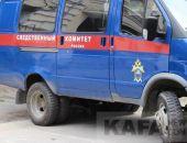 Хабаровские живодёрки арестованы и обвиняются по нескольким статьям