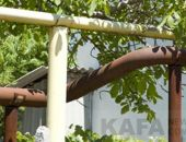 В Феодосии «Крымгазсетям» напомнили об обрезке деревьев