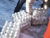 Двое жителей Подмосковья украли 35 тысяч бутылок водки