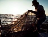 В Крыму с браконьера из Керчи хотят взыскать почти 15 млн. руб. за незаконный вылов рыбы