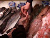 Четверть всех продуктов на российском рынке – фальсификат