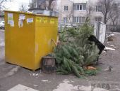 Куда деть елку после Нового года:фоторепортаж