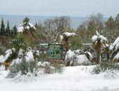 В Крыму обильный снегопад украсил Никитский ботанический сад (фоторепортаж):фоторепортаж