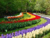 Никитский ботанический сад передадут в федеральную собственность