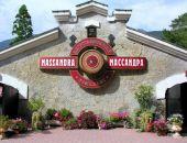 Крымский винзавод «Массандра» готов принять на работу 1000 человек