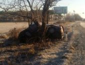 В Крыму на трассе Феодосия – Симферополь в ДТП ВАЗ «въехал» в дерево (обновлено)