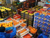 В феврале в Крым из Турции ввезли более 900 т фруктов, вывезли в Украину почти 5 тыс. тонн зерновых