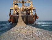 Учёные хотят ограничить траловый лов у побережья Крыма с целью восстановления популяции рыб