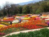 Никитский ботсад приглашает жителей и гостей Крыма на юбилейный «Парад тюльпанов»