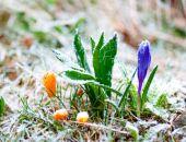 На выходных в Крыму снова похолодание, ночью заморозки