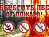В Крыму объявлен пожароопасным период с 1 апреля по 15 ноября