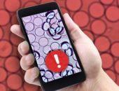 Разработан новый тест для проверки безопасности пищи с помощью смартфона