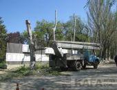 В Феодосии у Доски Почета пилят деревья