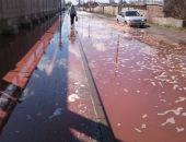Под Липецком обрушилась кровля консервного завода, тонны  сока стекли в реку Дон