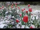 В Крыму снова объявлено штормовое предупреждение – на этот раз из-за заморозков