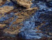 В Феодосии загрязняли почву нефтепродуктами