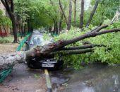 Ураган в Москве: 11 погибших, более 160 раненых