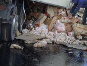 Крымчане растащили 10 т замороженных кур из попавшей под Керчью в ДТП «фуры»