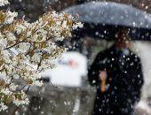 Май в Москве в этом году оказался самым холодным с начала века