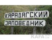 В текущем году пять крымских заповедников и два заказника перейдут в федеральное управление