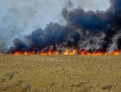 В результате падения частей стартовавшей ракеты на Байконуре сгорел водитель КамАЗа
