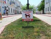 В Феодосии нет площадок для выгула собак
